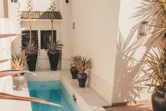 design of patios and gardens in mallorca